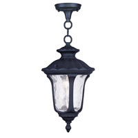 Livex 7849-04 Oxford 1 Light 7 inch Black Outdoor Hanging Lantern photo thumbnail