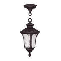 Oxford 1 Light 7 inch Bronze Outdoor Hanging Lantern