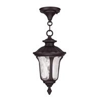 Livex 7849-07 Oxford 1 Light 7 inch Bronze Outdoor Hanging Lantern