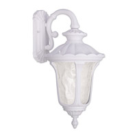 Oxford 1 Light 19 inch White Outdoor Wall Lantern