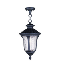 Livex Lighting Oxford 1 Light Outdoor Hanging Lantern in Black 7854-04