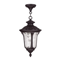 Oxford 1 Light 10 inch Bronze Outdoor Hanging Lantern