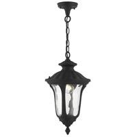 Livex Lighting 7854-14 Oxford 1 Light 10 inch Textured Black Outdoor Pendant Lantern