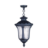 Livex Lighting Oxford 3 Light Outdoor Hanging Lantern in Black 7858-04