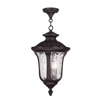 Livex Lighting Oxford 3 Light Outdoor Hanging Lantern in Bronze 7858-07