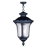 Livex Lighting Oxford 3 Light Outdoor Hanging Lantern in Black 7865-04
