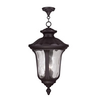 Livex Lighting Oxford 3 Light Outdoor Hanging Lantern in Bronze 7865-07