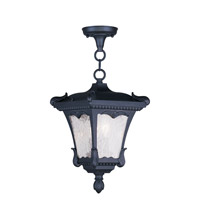 Livex Lighting Millstone 2 Light Outdoor Hanging Lantern in Black 7985-04