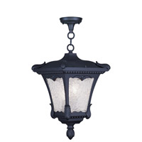 Livex Lighting Millstone 3 Light Outdoor Hanging Lantern in Black 7989-04
