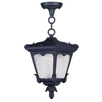 Livex Lighting Millstone 1 Light Outdoor Hanging Lantern in Black 7992-04