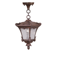 Livex Lighting Millstone 1 Light Outdoor Hanging Lantern in Imperial Bronze 7992-58 photo thumbnail