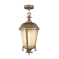 Livex Lighting Seville 1 Light Outdoor Hanging Lantern in Palacial Bronze with Gilded Accents 8637-64