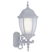 Limited 1 Light 24 inch White Outdoor Wall Lantern