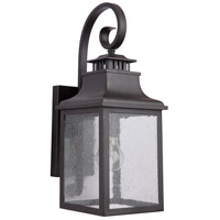 Drake 1 Light 18 inch Black Outdoor Wall Lantern