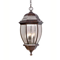 Signature 3 Light 25 inch Heritage Bronze Outdoor Hanging Lantern