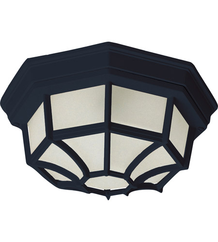 Outdoor Ceiling Mount Lighting