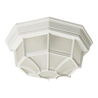 Crown Hill 2 Light 12 inch White Outdoor Ceiling Mount