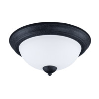 Taylor 2 Light 13 inch Textured Black Flush Mount Ceiling Light