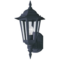 Builder Cast 1 Light 15 inch Black Outdoor Wall Mount