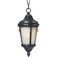 Maxim Lighting Odessa 1 Light Outdoor Hanging Lantern in Espresso 3018LTES