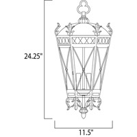 Maxim Lighting Canterbury 3 Light Outdoor Hanging Lantern in Artesian Bronze 30459CDAT alternative photo thumbnail