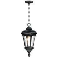 Maxim 3058WGBK Sentry 1 Light 9 inch Black Outdoor Hanging Lantern