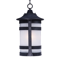 Maxim 3129CONAR Casa Grande 1 Light 10 inch Anthracite Outdoor Hanging Lantern