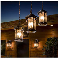 Maxim Lighting Santa Barbara VX 3 Light Outdoor Hanging Lantern in Sienna 40038CDSE photo thumbnail