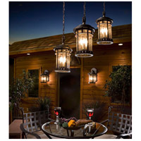 Maxim 40039CDSE Santa Barbara VX 3 Light 11 inch Sienna Outdoor Hanging Lantern