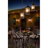 Maxim 40039CDSE Santa Barbara VX 3 Light 11 inch Sienna Outdoor Hanging Lantern alternative photo thumbnail
