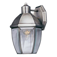 Maxim Lighting South Park 1 Light Outdoor Wall Mount in Brushed Pewter 4005CLBP