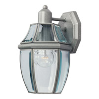 Maxim Lighting South Park 1 Light Outdoor Wall Mount in Pewter 4010CLPE