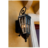 Maxim 40154CDSE Beacon Hill VX 3 Light 31 inch Sienna Outdoor Wall Mount alternative photo thumbnail