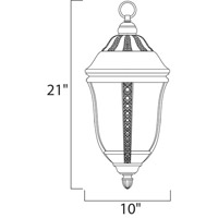 Maxim Lighting Whittier VX 3 Light Outdoor Hanging Lantern in Earth Tone 40210WGET alternative photo thumbnail