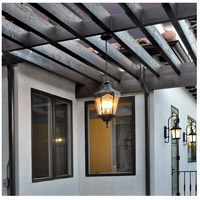 Maxim Lighting Garden VX 3 Light Outdoor Hanging Lantern in Oriental Bronze 40279WGOB photo thumbnail