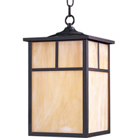 Maxim Lighting Coldwater 1 Light Outdoor Hanging Lantern in Burnished 4058HOBU