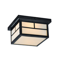 Maxim 4059WTBK Coldwater 2 Light 9 inch Black Outdoor Flush Mount