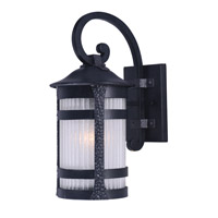 Casa Grande EE 1 Light 21 inch Anthracite Outdoor Wall Mount