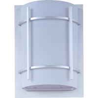 Luna Energy Efficient 1 Light 12 inch Brushed Metal Outdoor Wall Mount