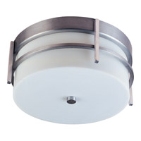 Luna Energy Efficient 2 Light 11 inch Brushed Metal Outdoor Ceiling Mount