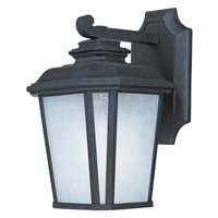 Radcliffe Energy Efficient 1 Light 11 inch Black Oxide Outdoor Wall Mount