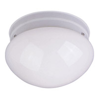 Utility Energy Efficient 1 Light 8 inch White Flush Mount Ceiling Light