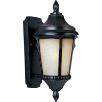 Odessa Energy Efficient 1 Light 16 inch Espresso Outdoor Wall Mount