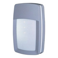 Zenith Energy Efficient 2 Light 12 inch Platinum Outdoor Wall Mount