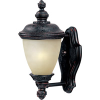 Carriage House Energy Efficient 1 Light 13 inch Oriental Bronze Outdoor Wall Mount