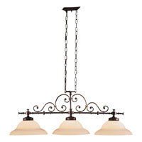 Metropolitan Signature 3 Light Island Light in Aged Bronze N1220-26