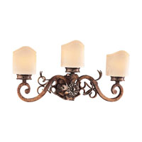 Metropolitan Montparnasse French Black 3 Light Bath Fixture in Tuscan Patina N2103-196