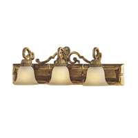 Metropolitan Pamplona 3 Light Bath Fixture in Aged Wood w/Gold Highlights N2133-34 photo thumbnail