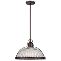 Signature 1 Light 16 inch Dark Brushed Bronze Plated Pendant Ceiling Light