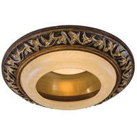 Salon Grand PAR30L Florence Patina Recessed Trim, 6 Inch